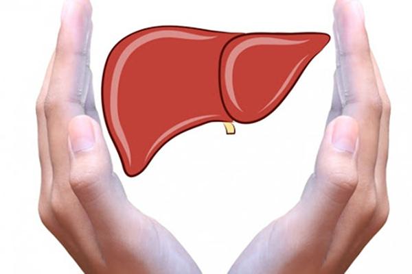 Những điều cần biết khi khám bệnh gan 1